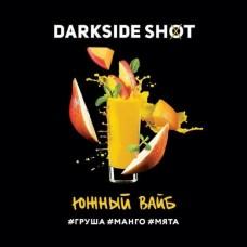 Табак для кальяна Dark Side Dark SHOT Южный Вайб 120gr